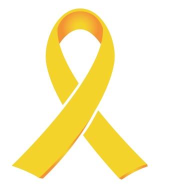 gold ribbon cci